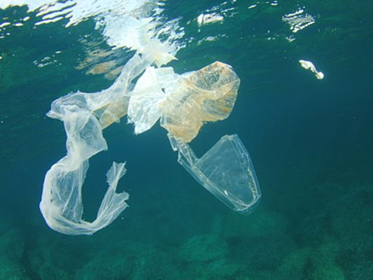 Plastic rubbish garbage pollution in ocean (©Richard Carey/Fotolia)