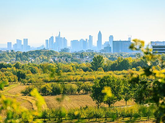 Skyline Frankfurt 2 (© Photodesign-Deluxe / Adobe Stock)